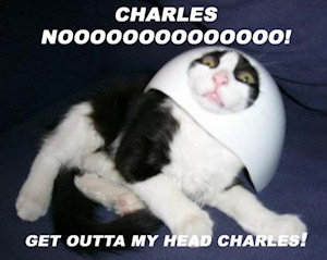 Get out of my head Charles